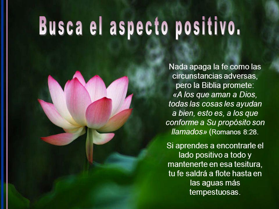 Busca el aspecto positivo.