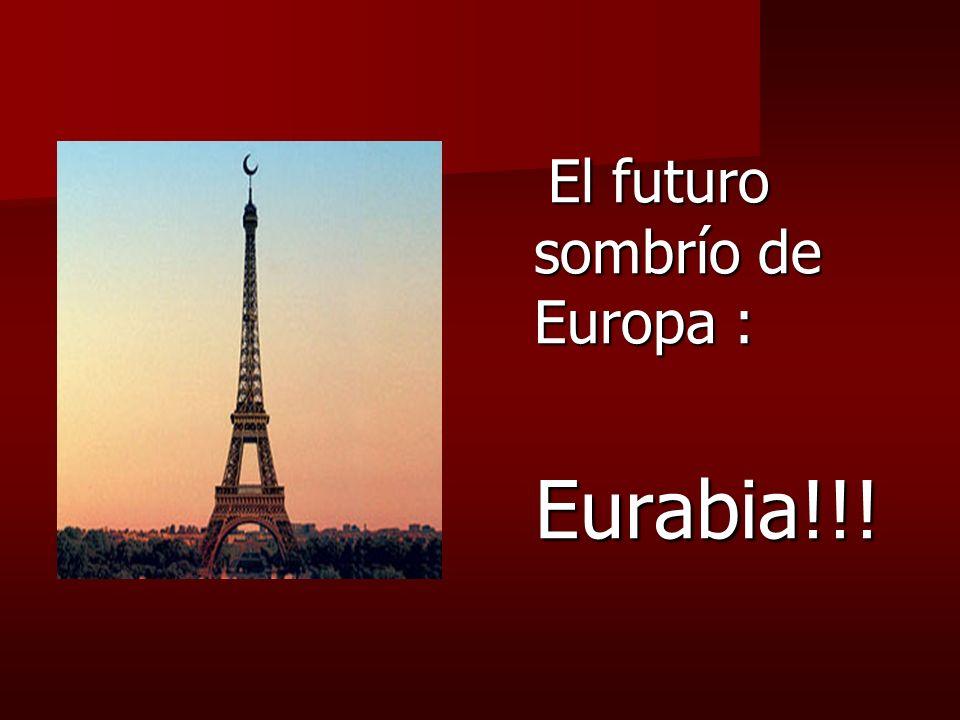 El futuro sombrío de Europa :
