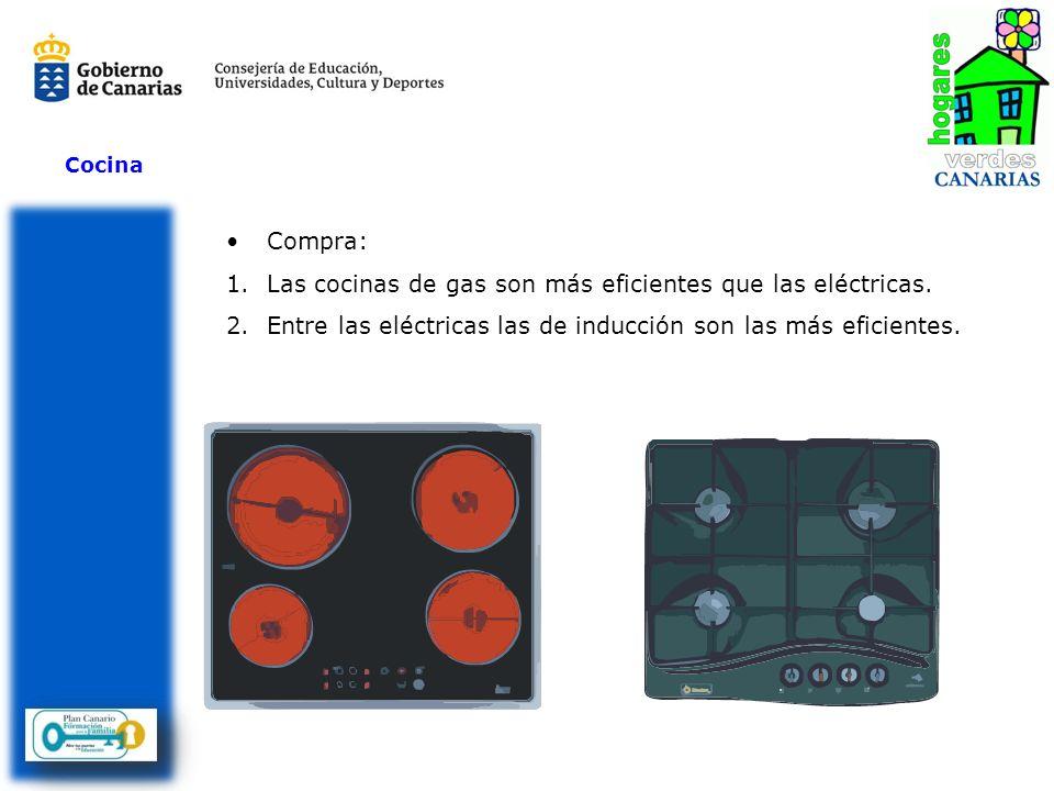 Las cocinas de gas son más eficientes que las eléctricas.