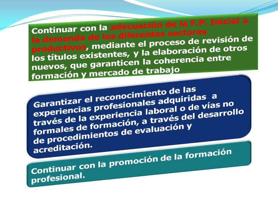 Continuar con la promoción de la formación profesional.