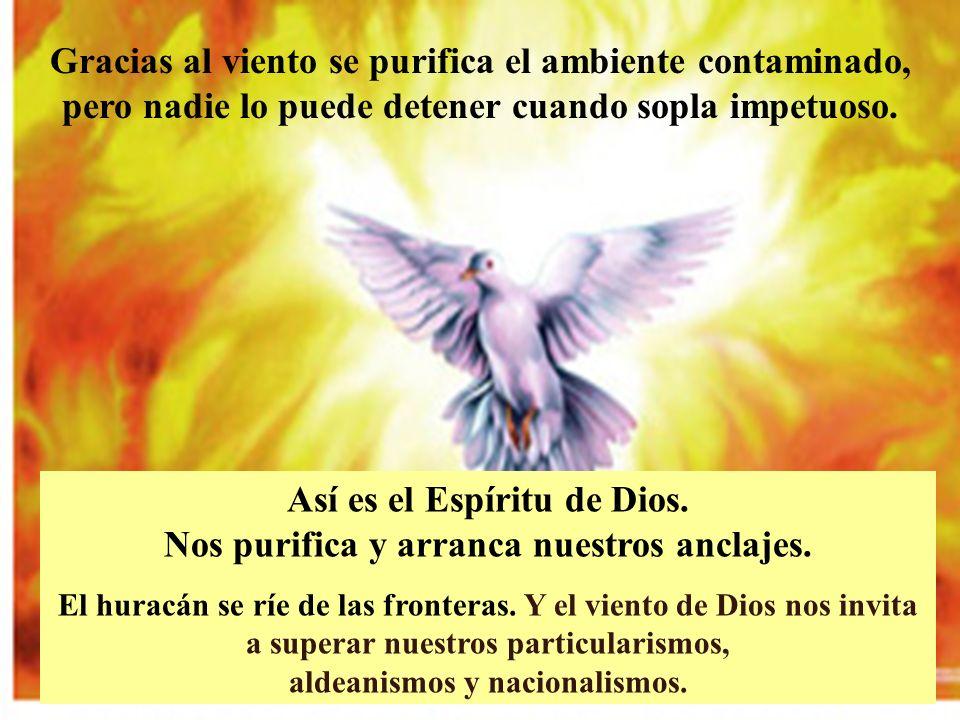 Así es el Espíritu de Dios. Nos purifica y arranca nuestros anclajes.