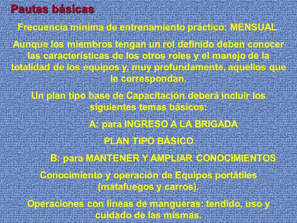 Pautas básicas Frecuencia mínima de entrenamiento práctico: MENSUAL.