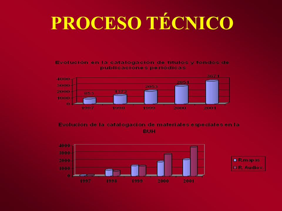 PROCESO TÉCNICO