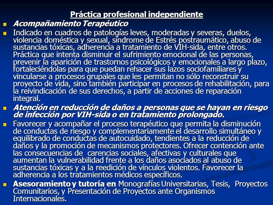 Práctica profesional independiente