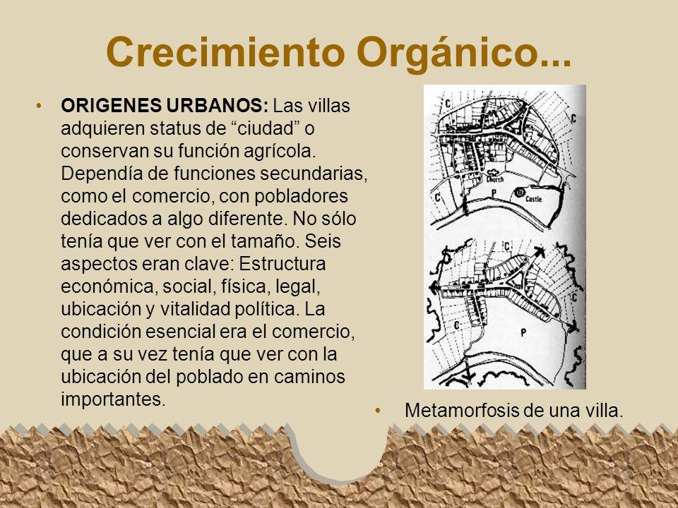 Crecimiento Orgánico...