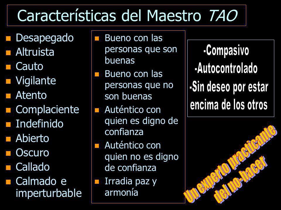 Características del Maestro TAO