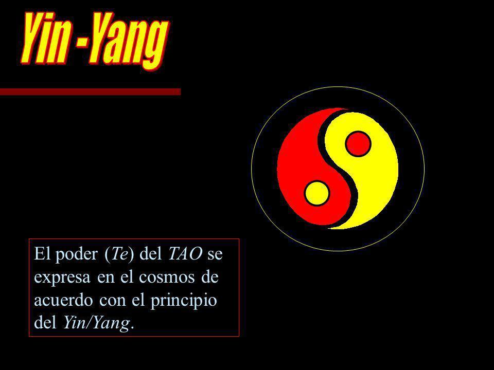 Yin -Yang El poder (Te) del TAO se expresa en el cosmos de acuerdo con el principio del Yin/Yang.