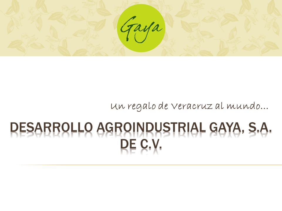 DESARROLLO AGROINDUSTRIAL GAYA, S.A. DE C.V.