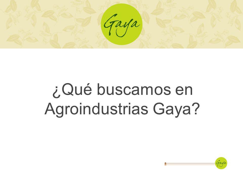 ¿Qué buscamos en Agroindustrias Gaya