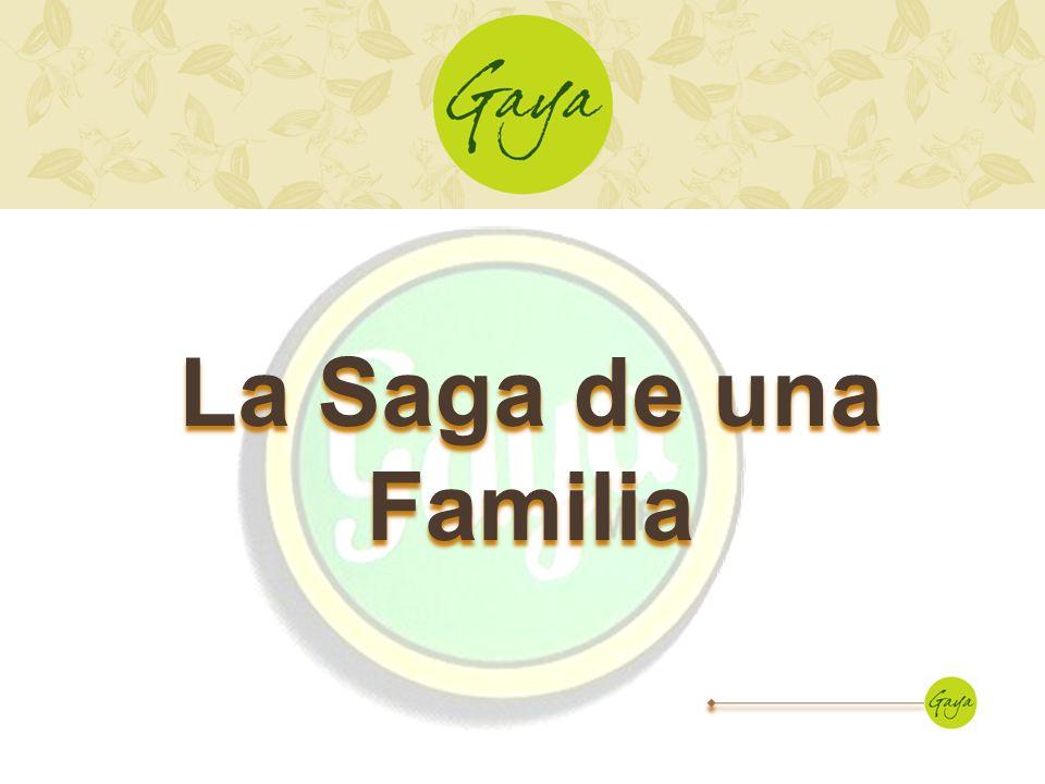 La Saga de una Familia