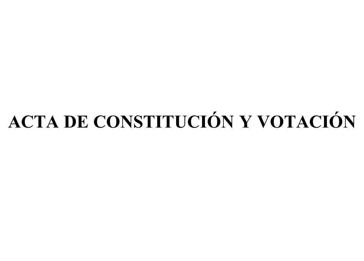 ACTA DE CONSTITUCIÓN Y VOTACIÓN