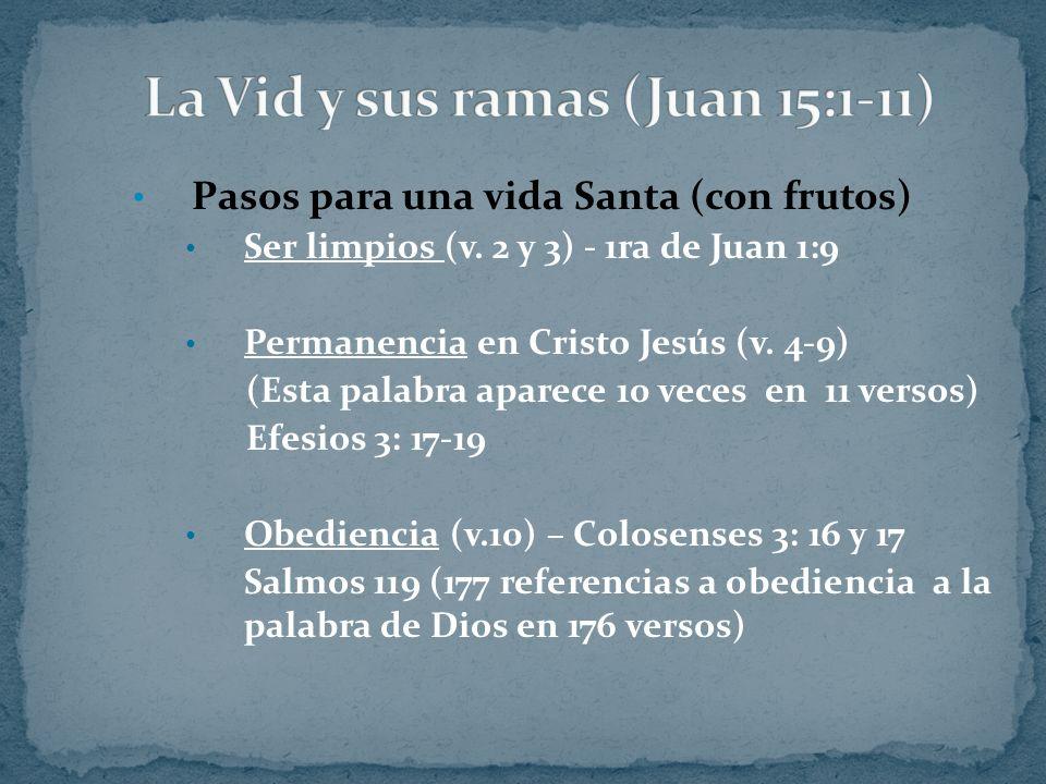 La Vid y sus ramas (Juan 15:1-11)