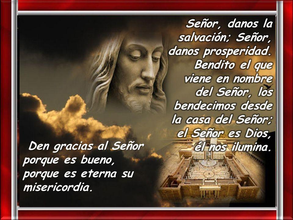 Señor, danos la salvación; Señor, danos prosperidad