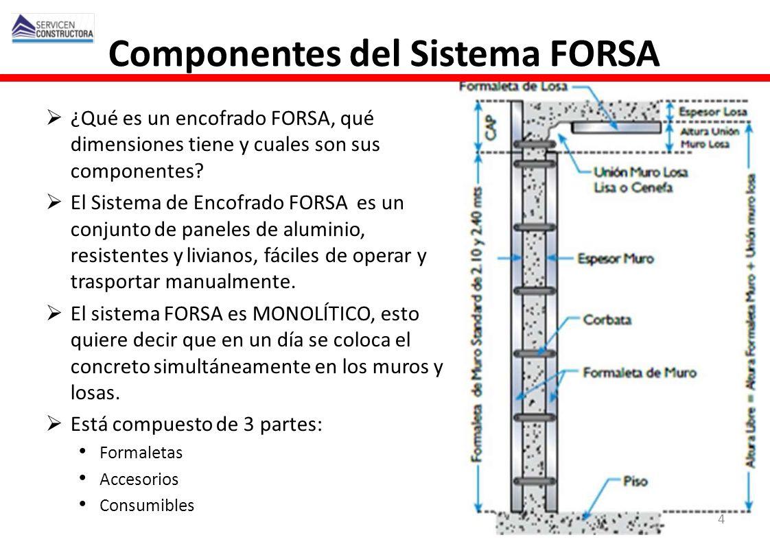 Componentes del Sistema FORSA