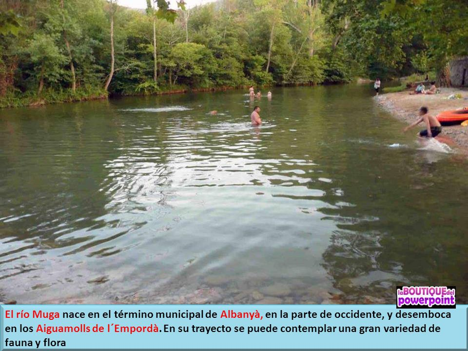 El río Muga nace en el término municipal de Albanyà, en la parte de occidente, y desemboca en los Aiguamolls de l´Empordà.