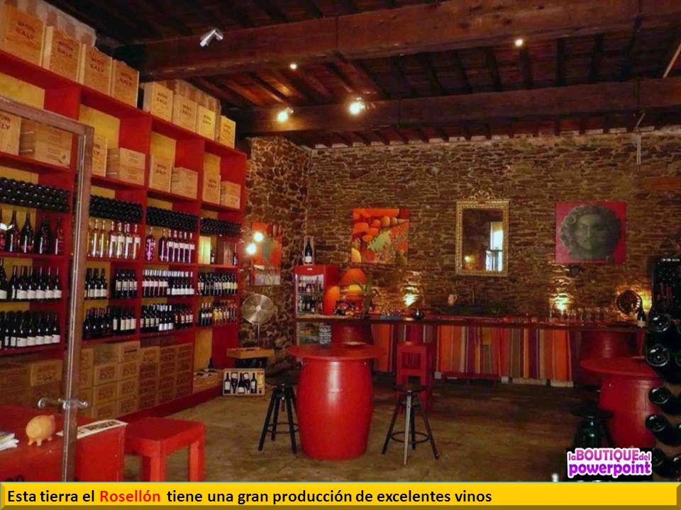 Esta tierra el Rosellón tiene una gran producción de excelentes vinos