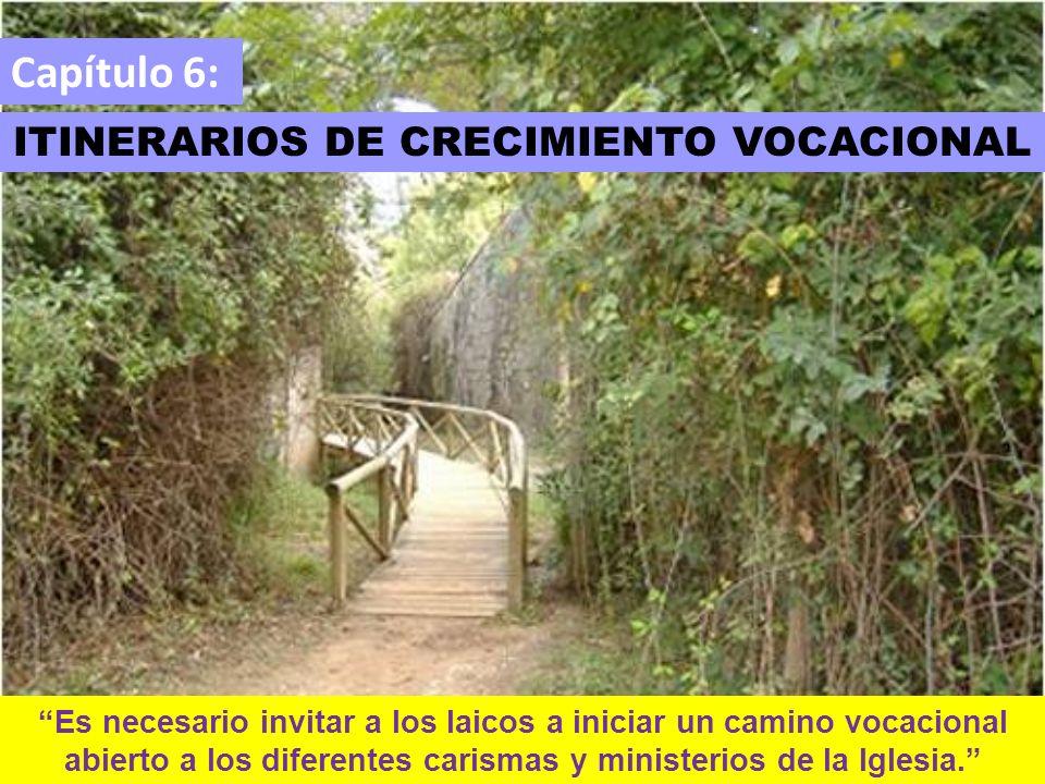Capítulo 6: ITINERARIOS DE CRECIMIENTO VOCACIONAL