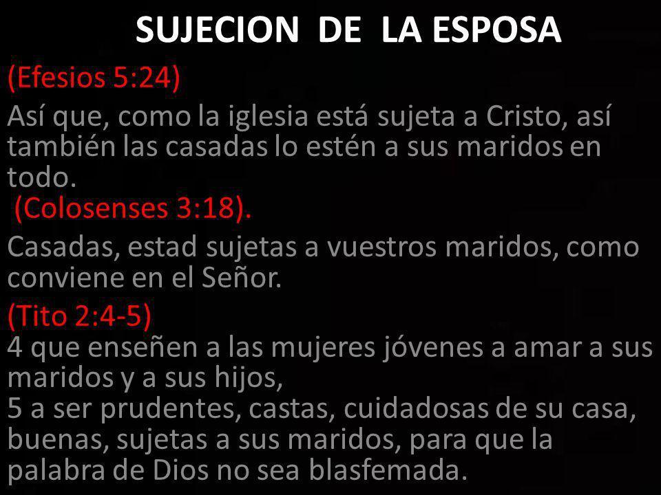 SUJECION DE LA ESPOSA (Efesios 5:24)