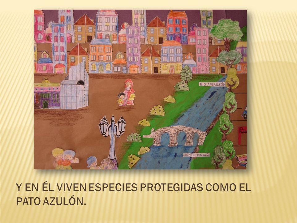 Y EN ÉL VIVEN ESPECIES PROTEGIDAS COMO EL PATO AZULÓN.