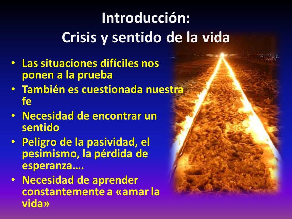 Introducción: Crisis y sentido de la vida