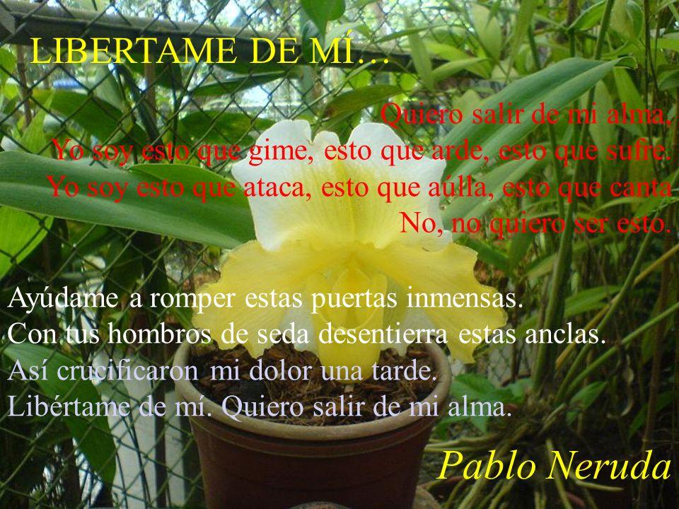 Pablo Neruda LIBERTAME DE MÍ… Quiero salir de mi alma,