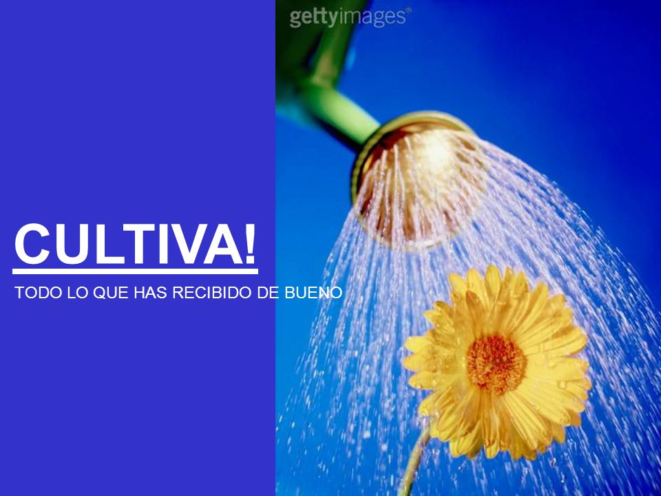 CULTIVA! TODO LO QUE HAS RECIBIDO DE BUENO
