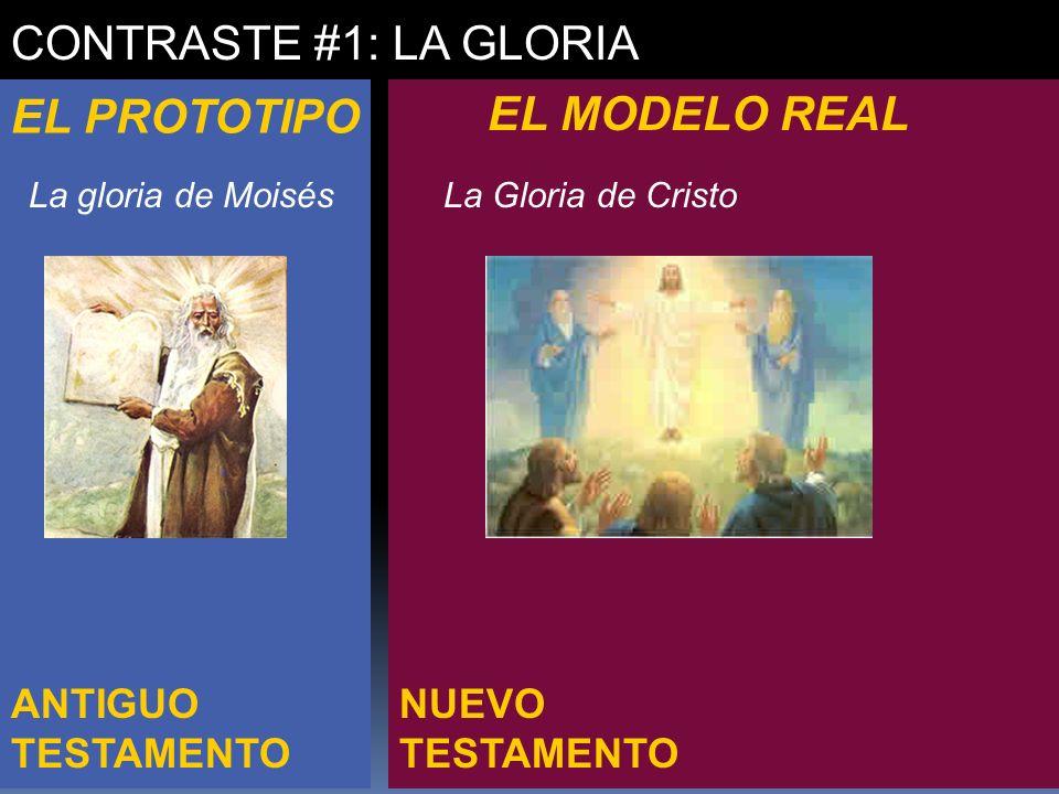 CONTRASTE #1: LA GLORIA EL PROTOTIPO EL MODELO REAL ANTIGUO TESTAMENTO