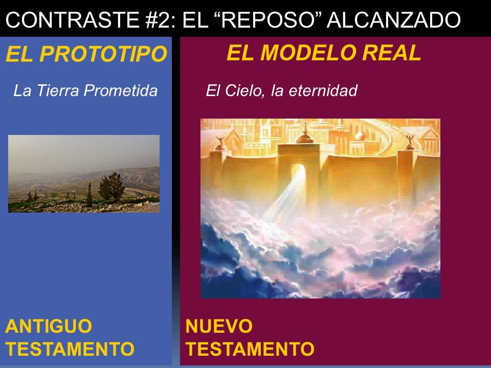 CONTRASTE #2: EL REPOSO ALCANZADO