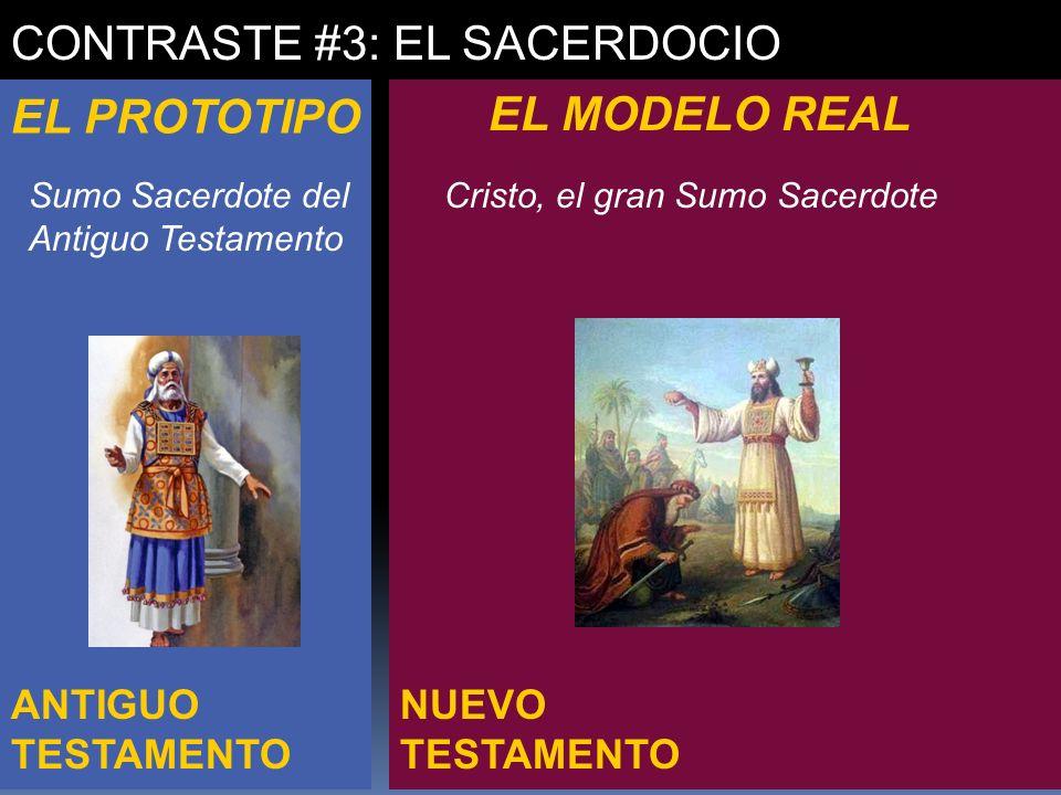 CONTRASTE #3: EL SACERDOCIO