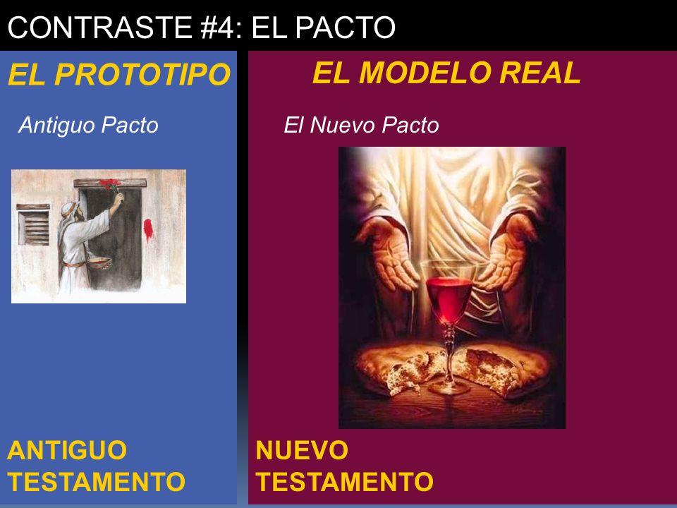 CONTRASTE #4: EL PACTO EL PROTOTIPO EL MODELO REAL ANTIGUO TESTAMENTO