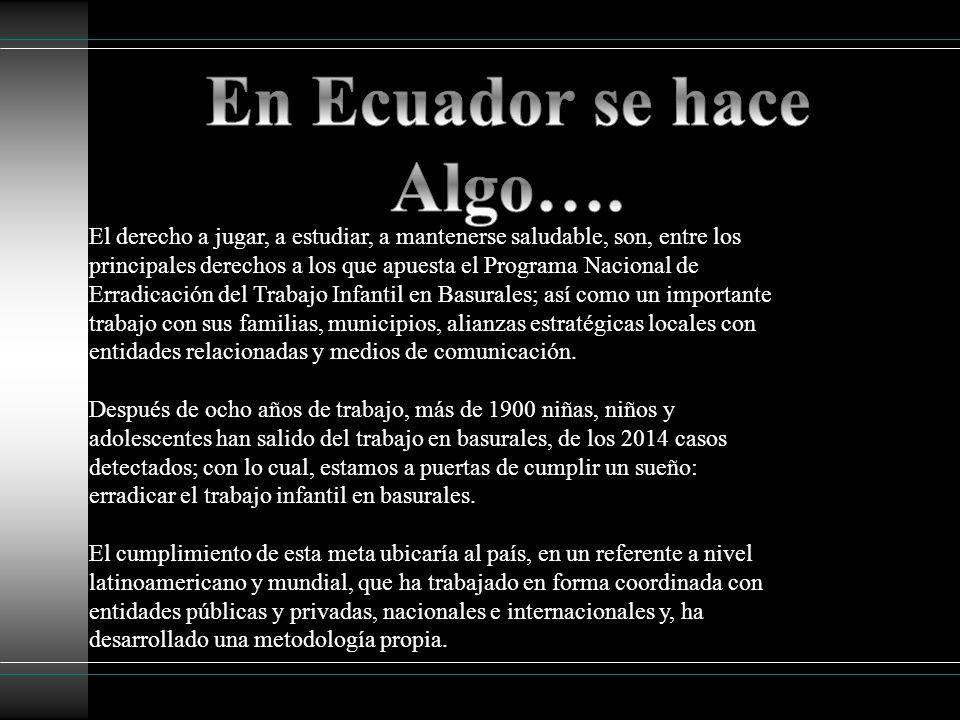 En Ecuador se hace Algo….
