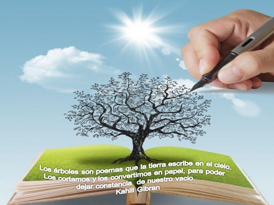 Los árboles son poemas que la tierra escribe en el cielo.