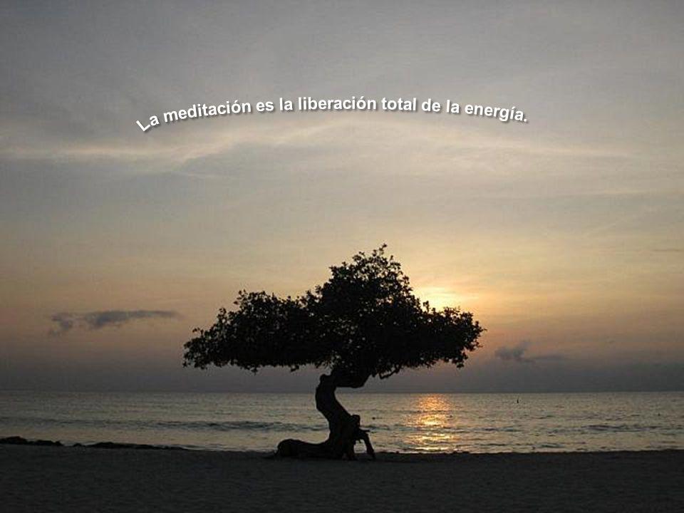 La meditación es la liberación total de la energía.