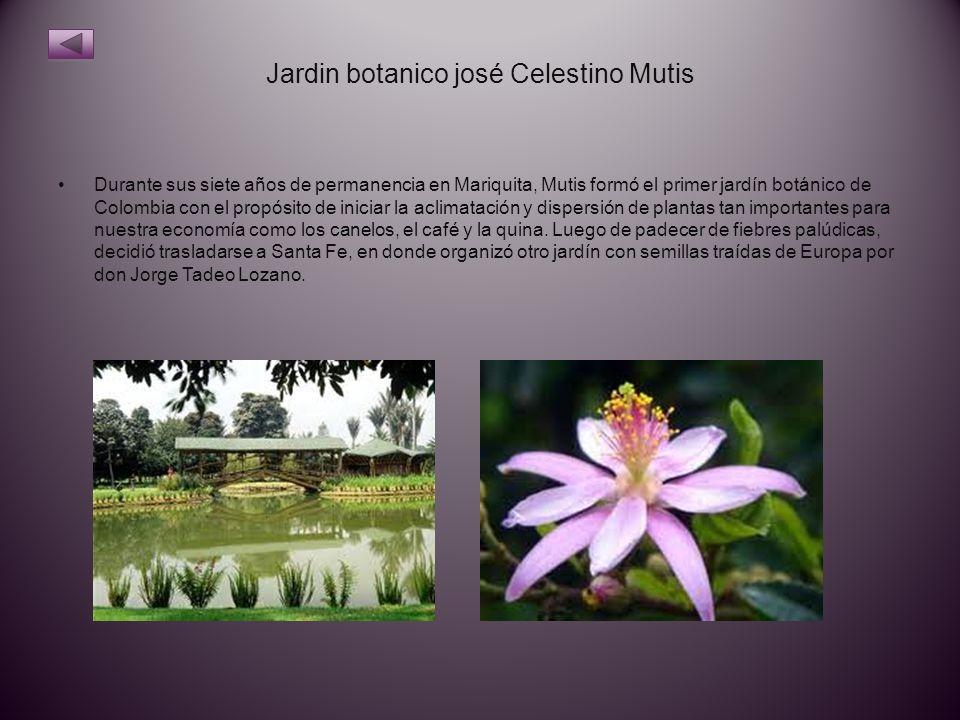 Jardin botanico josé Celestino Mutis