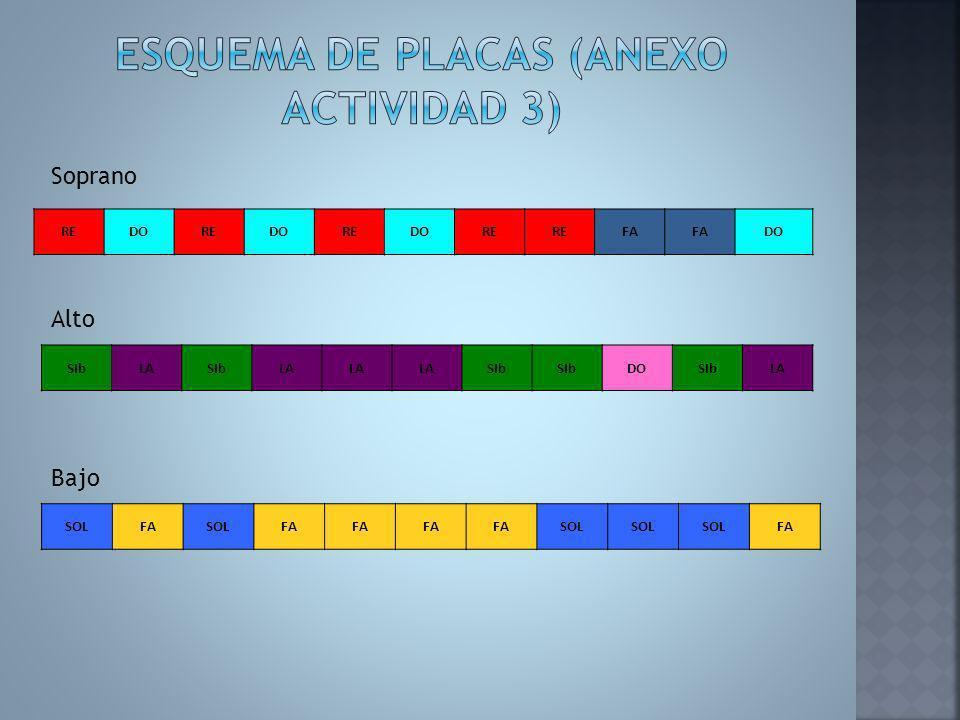 Esquema de placas (Anexo actividad 3)
