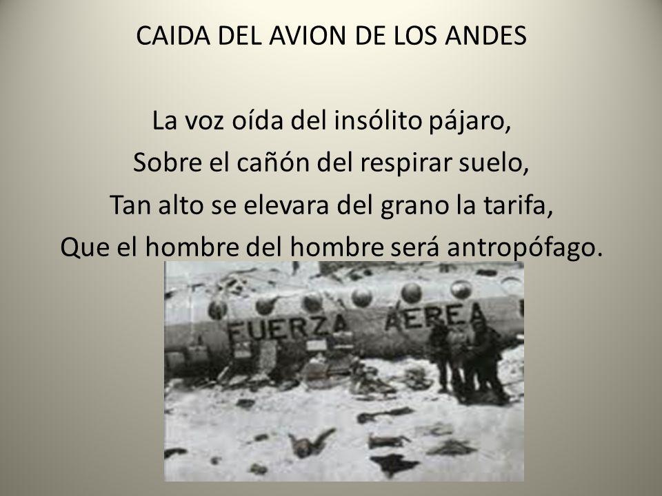 CAIDA DEL AVION DE LOS ANDES La voz oída del insólito pájaro,