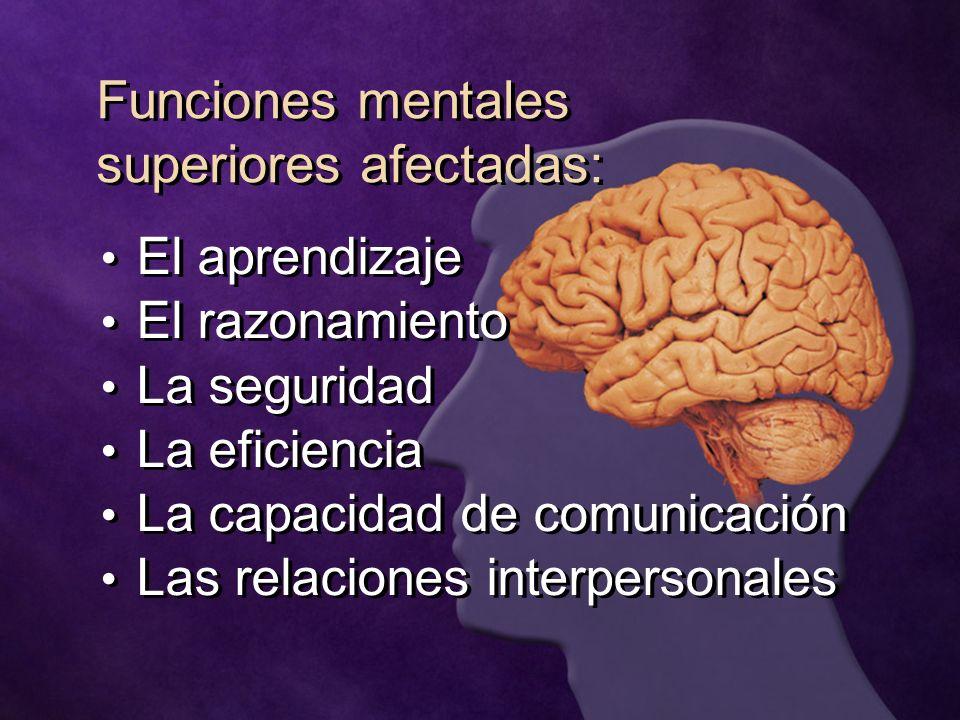 Funciones mentales superiores afectadas: