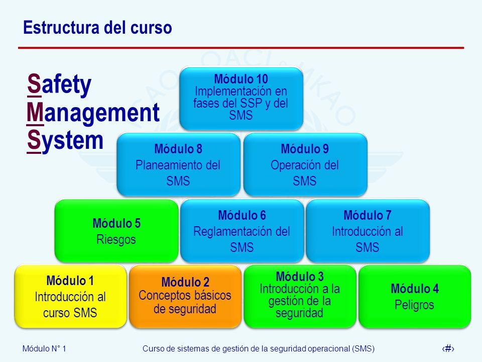 Safety Management System Estructura del curso