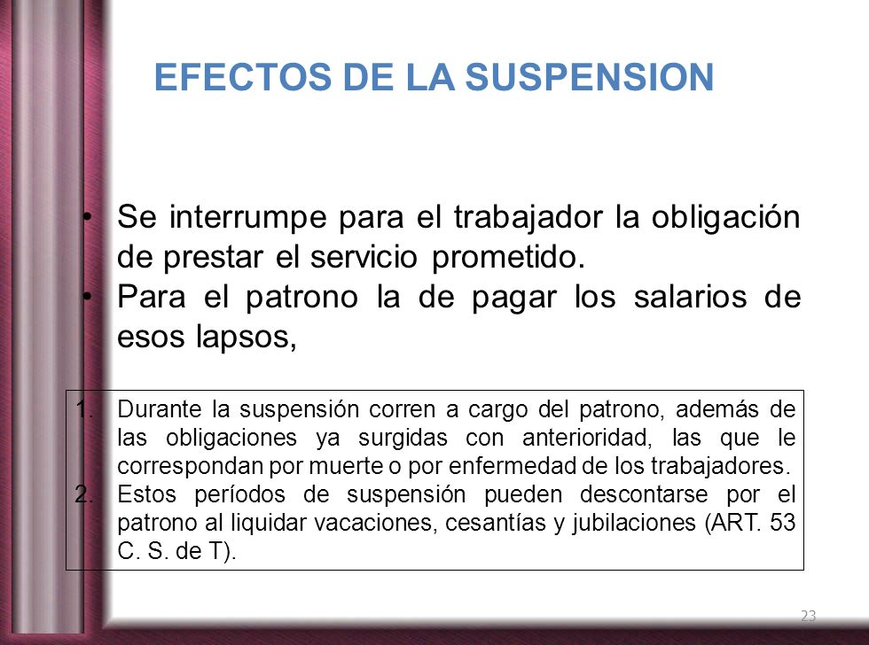 EFECTOS DE LA SUSPENSION.