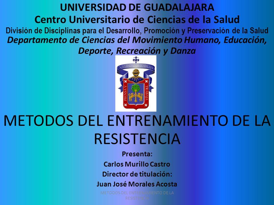 Director de titulación: Juan José Morales Acosta