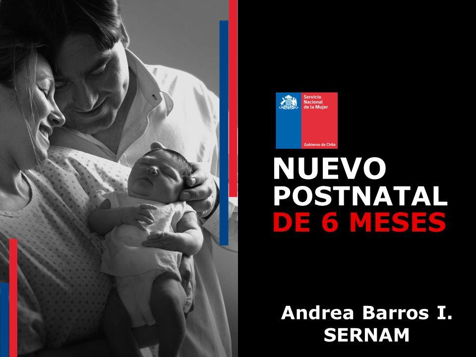NUEVO POSTNATAL DE 6 MESES Andrea Barros I. SERNAM