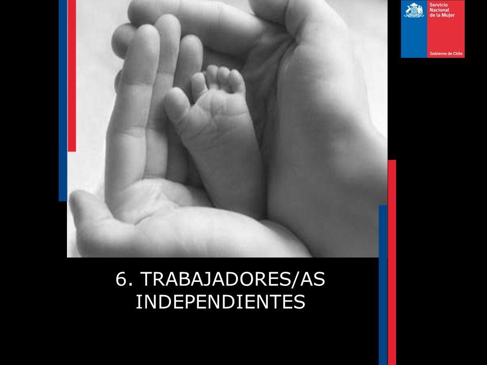 6. TRABAJADORES/AS INDEPENDIENTES