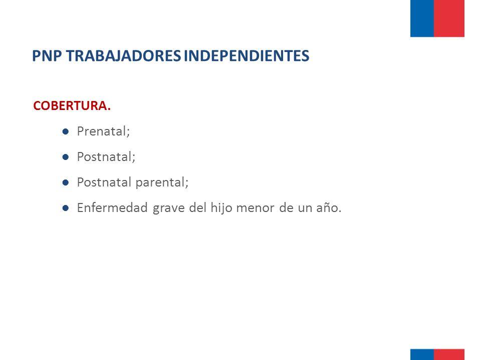PNP TRABAJADORES INDEPENDIENTES