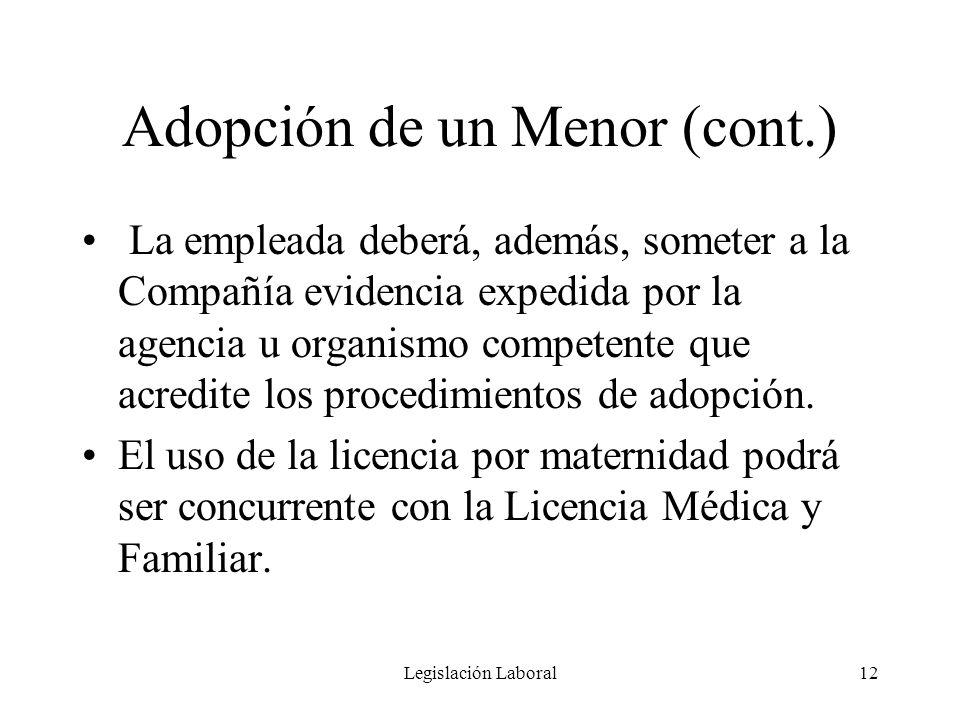 Adopción de un Menor (cont.)