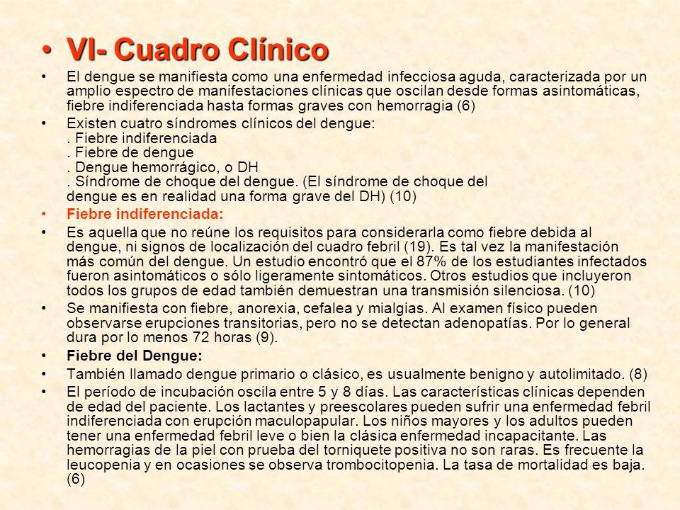 VI- Cuadro Clínico