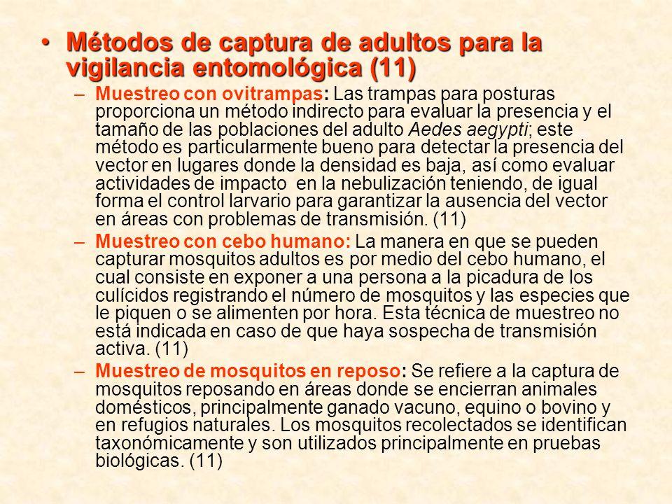 Métodos de captura de adultos para la vigilancia entomológica (11)