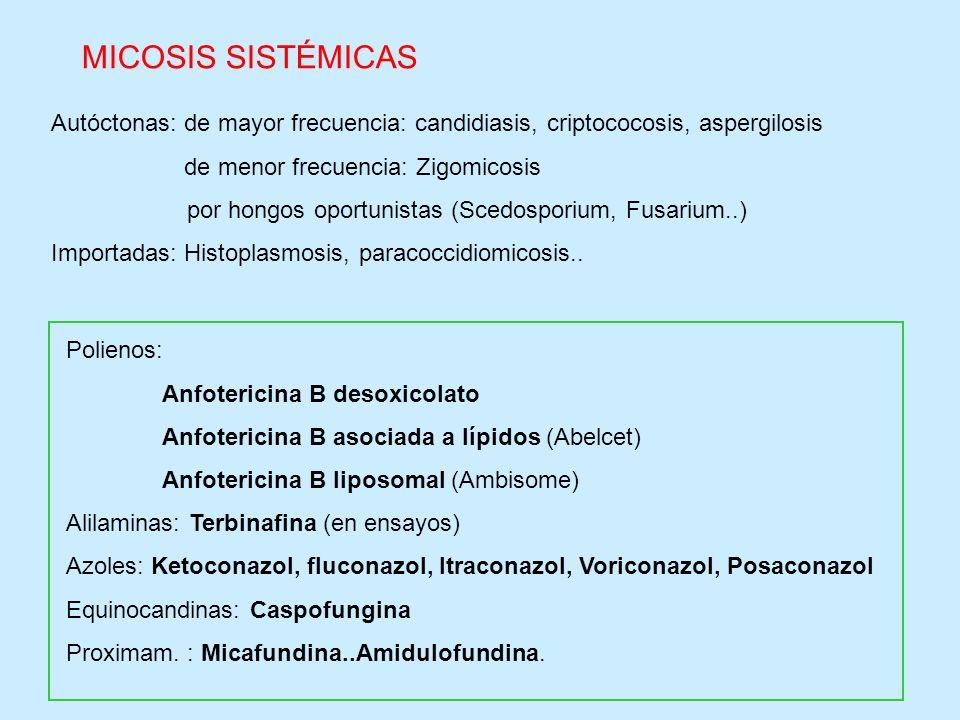 MICOSIS SISTÉMICAS Autóctonas: de mayor frecuencia: candidiasis, criptococosis, aspergilosis. de menor frecuencia: Zigomicosis.
