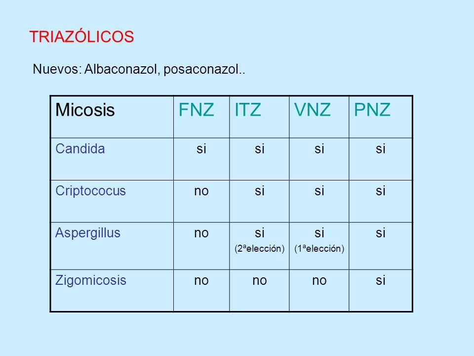 Micosis FNZ ITZ VNZ PNZ TRIAZÓLICOS Nuevos: Albaconazol, posaconazol..