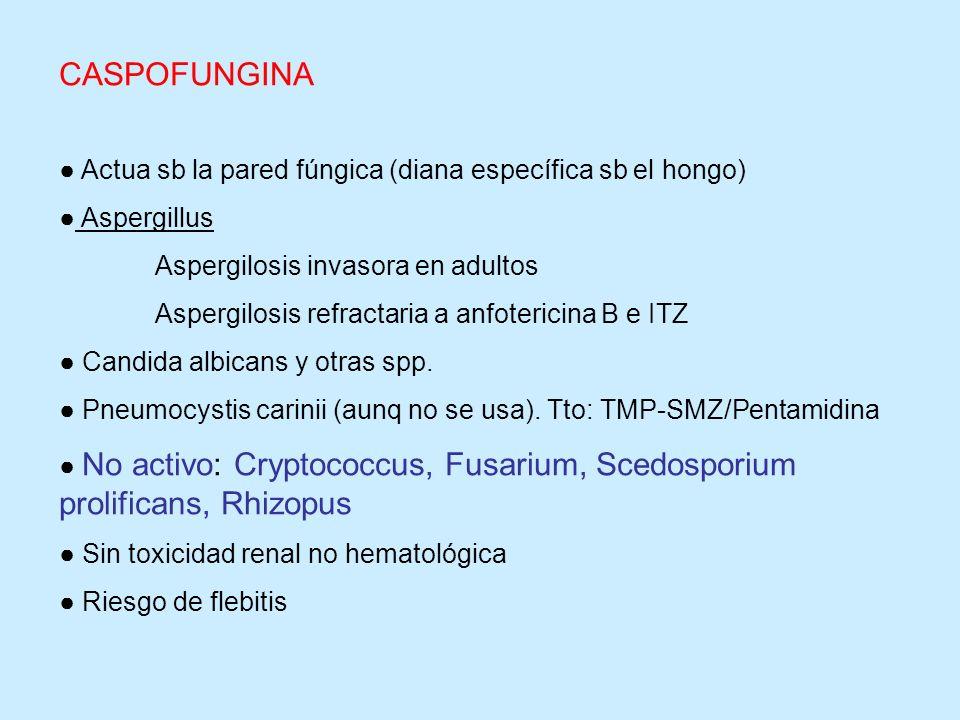 CASPOFUNGINA ● Actua sb la pared fúngica (diana específica sb el hongo) ● Aspergillus. Aspergilosis invasora en adultos.
