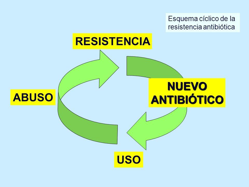 RESISTENCIA NUEVO ANTIBIÓTICO ABUSO USO Esquema cíclico de la